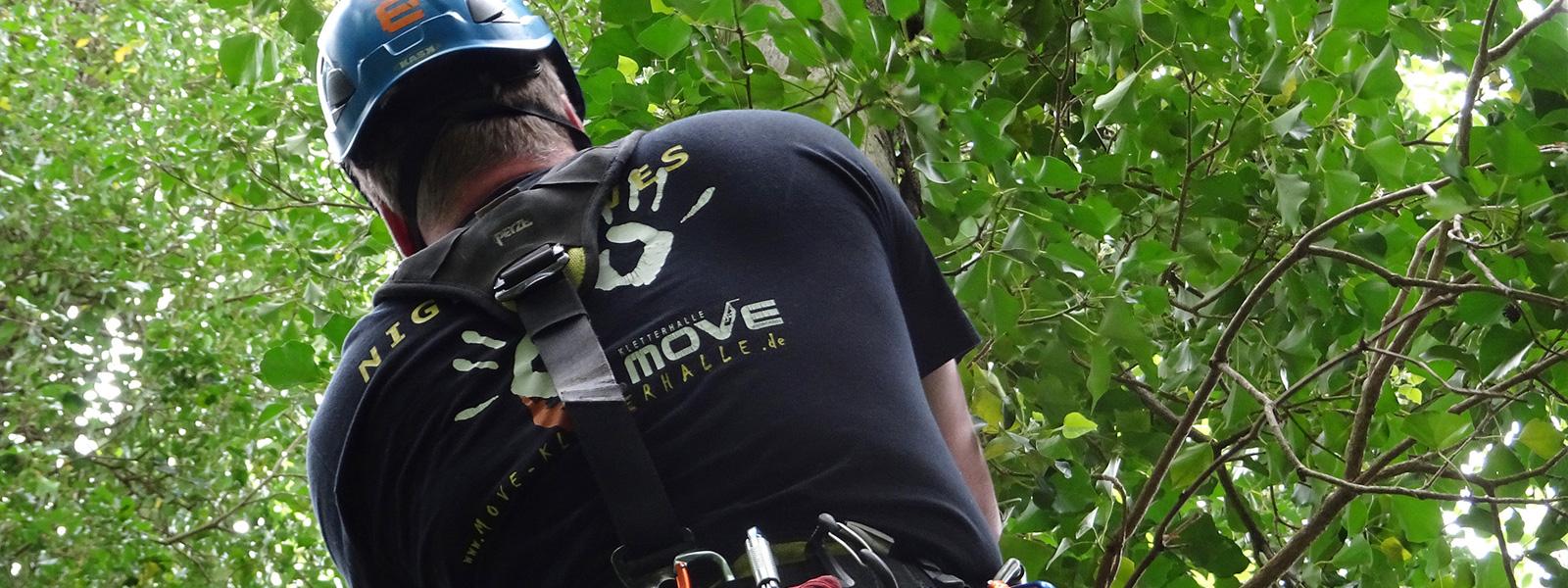 Katzenrettung vom Baum - Höhenretter - Tiernotruf